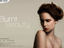 Burnt Beauty by S De Varax