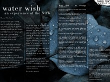 water-wish-spread